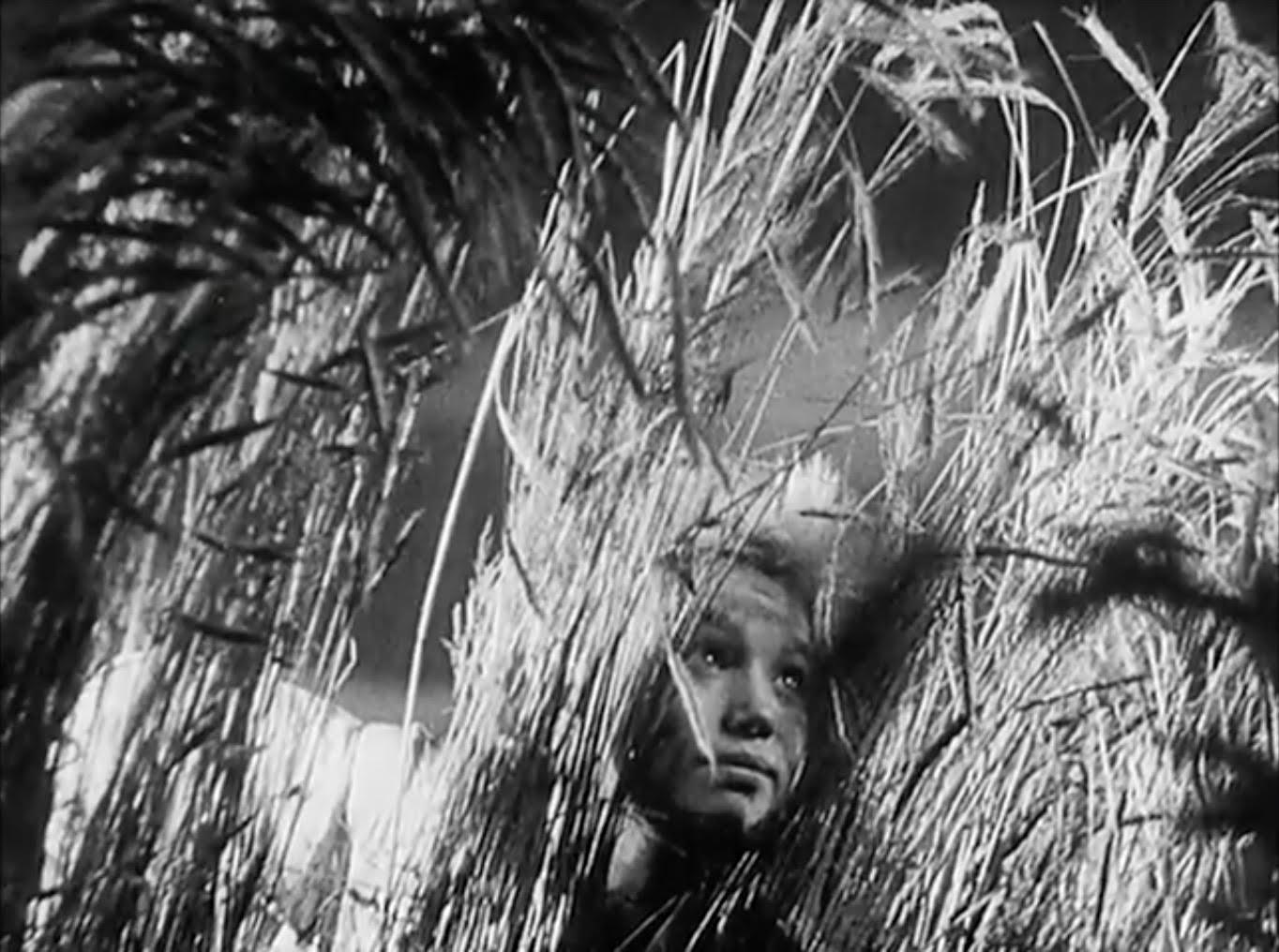 Sergei Eisenstein and Immersion in Nature